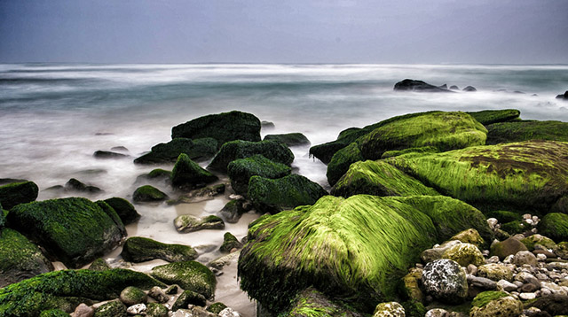 5 reasons you need to be in Salalah this month